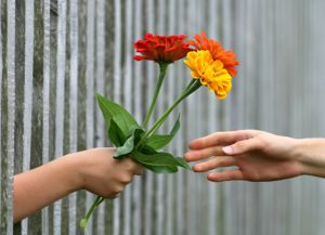 hands giving flowers